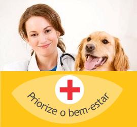 Consultas Veterinárias para Cães e Gatos realizadas em domicílio pela Clínica Veterinária PreVet Home