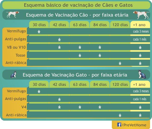 Esquema-Vacinacao-Caes-Gatos