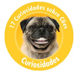 Destaque - 17 Curiosidades sobre os Cães
